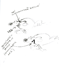 Original sketches by Grange Calveley to work out how Roobarb looks from the side.